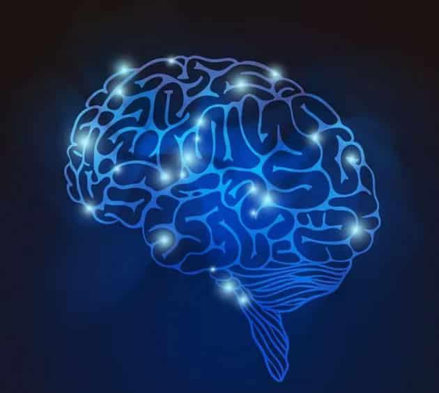 diagnose-your-brain
