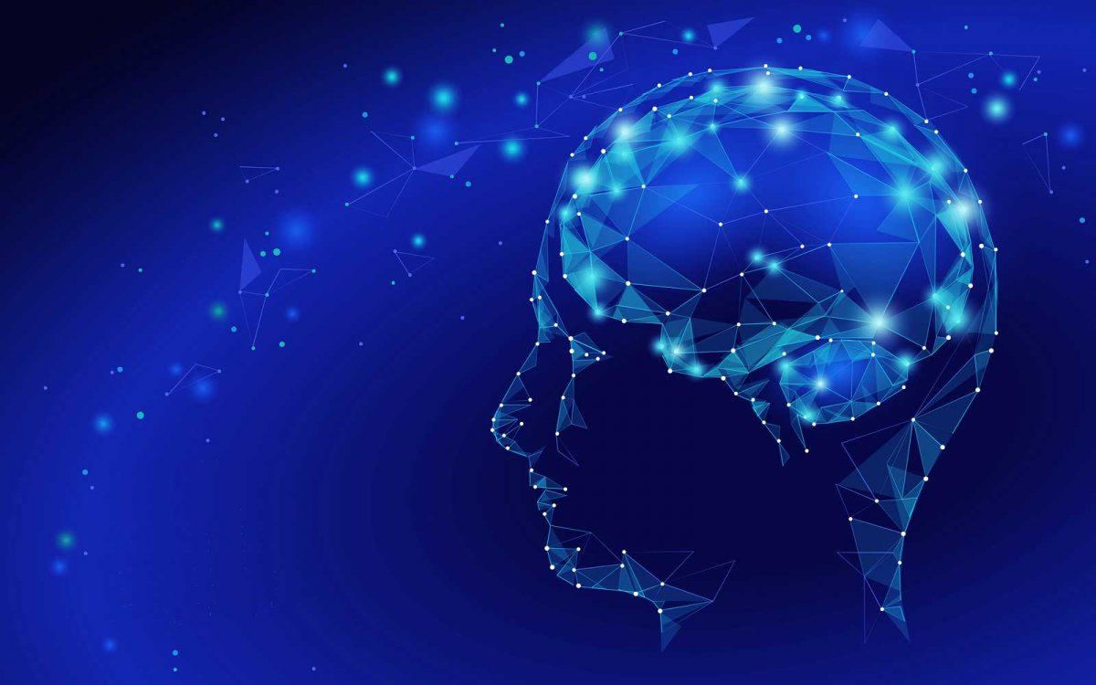 neural-organization-technique-dr-annaleee-kitay-dc
